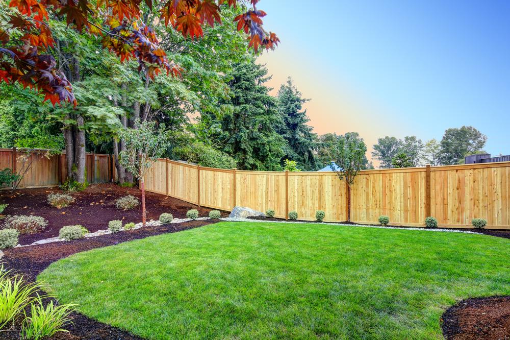 Harmoniser la déco du jardin en choisissant les bonnes plantes